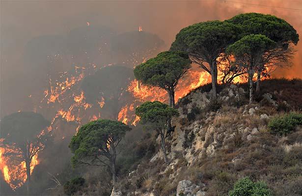 Unión Europea envía ayuda a Italia para contener incendios forestales