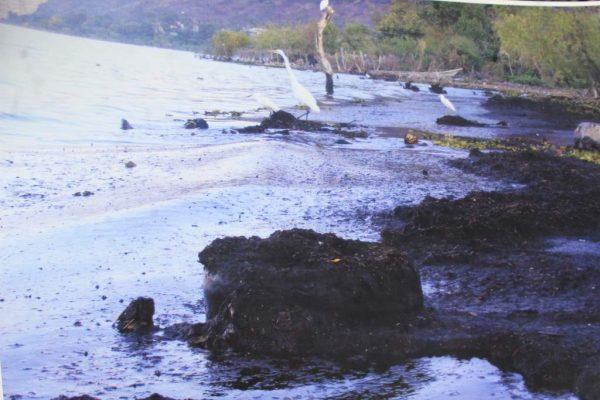 Impera la muerte en la Ribera de Chapala
