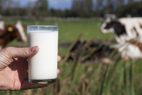 Las familias potosinas podrán adquirir cada bolsa del lácteo a tan sólo 10.90 pesos.