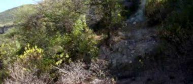 Localizan al menos 10 cadáveres putrefactos en los límites de Jalisco y Colima