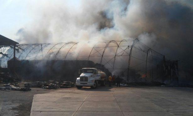 Sin sanciones ejemplares a quienes provocan incendios: EAR