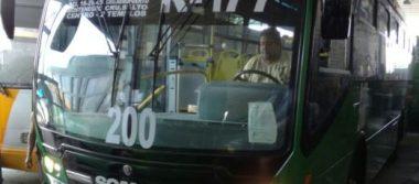 Transportistas piden que cese cacería de brujas contra su sector