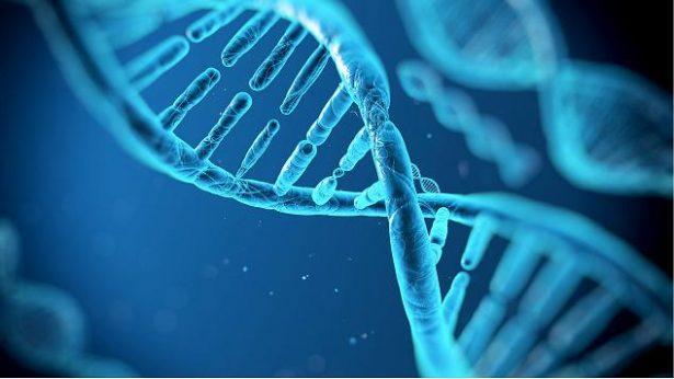 Del 10 al 15% de tumores cancerosos son hereditarios