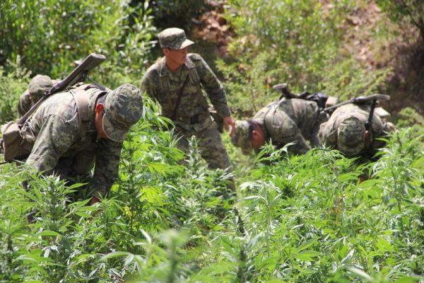 Militares rinden cuentas a la sociedad sobre sus actividades en el mes de julio