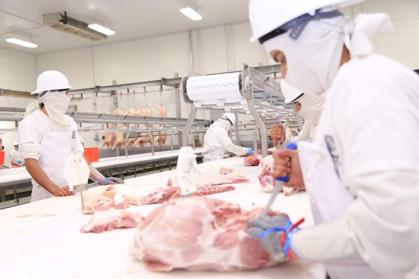 Apoyo a agroalimentariospara la exportación