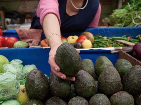 "Jalisco, Michoacán y Colima, tres ""gigantes"" agropecuarios"