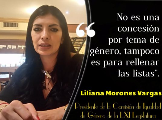 Las mujeres no somos cuotas:Liliana Morones