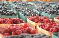 Fuerte crecimiento en el agromexicano