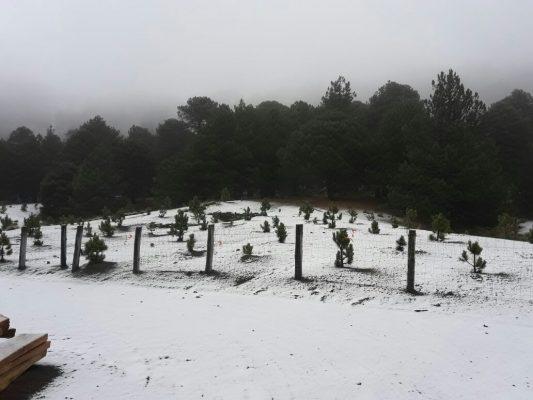 Se registra caída de nieve en el Nevado de Colima