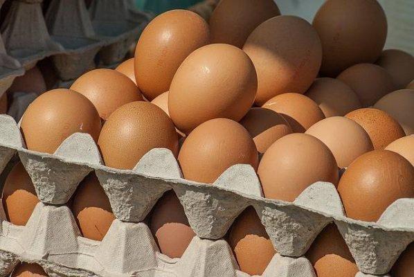 No tienen por qué incrementar el kilo de huevo ni de tortilla: Seder