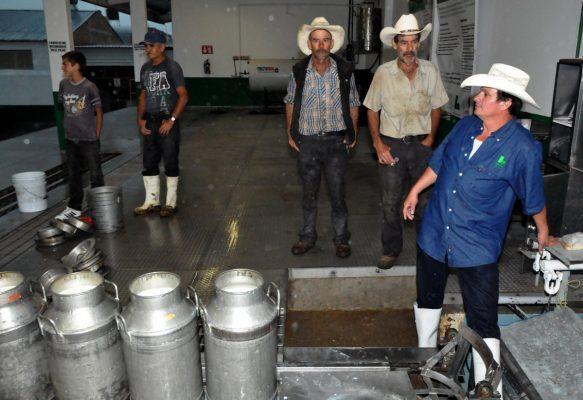 Productores de leche anuncian acciones de protesta en el país