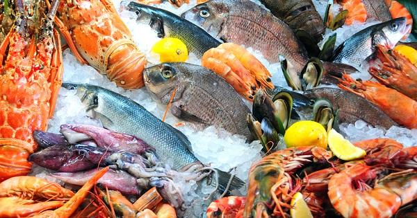 Veda en pesca en Puerto Vallarta por marea roja
