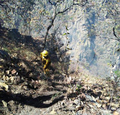Se registra incendio en el Cerro del Colli