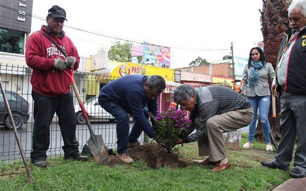 Rehabilitan áreas verdes de Tizayuca