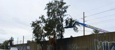 Muro no implicaría más deportaciones, coinciden expertos fronterizos