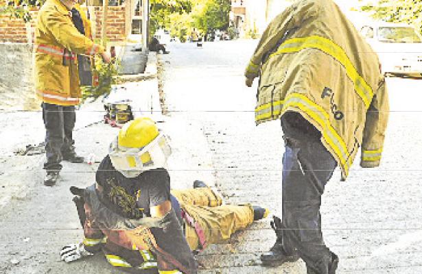 Atacan abejas a quince personas en Zihuatanejo