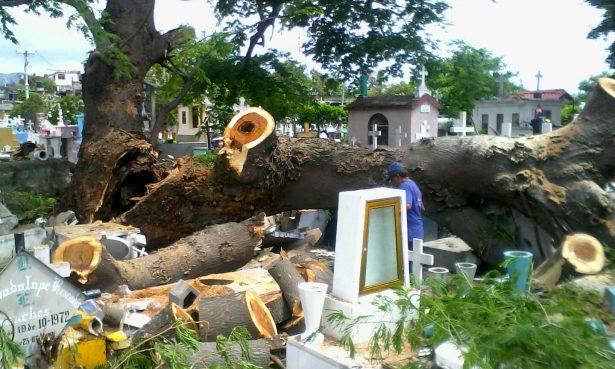 Entre basura y árboles caídos visitan hoy a los padres fallecidos