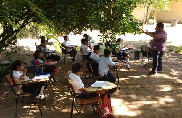 Toman clases bajo árbol como medida de protesta en Zihuatanejo