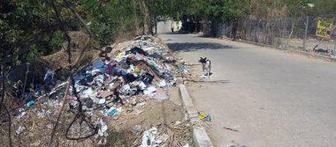 Pide Salud atender problema de basura en Rinconada del Mar