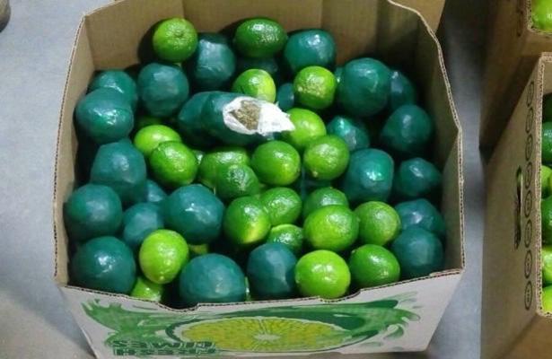 Decomisan limones llenos de marihuana en Sonora
