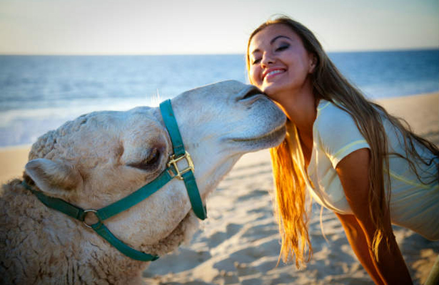 Experiencia en Los Cabos: Safari en Camello