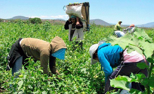 Seguirán exportaciones a EU a pesar de Trump en el Estado de Guanajuato