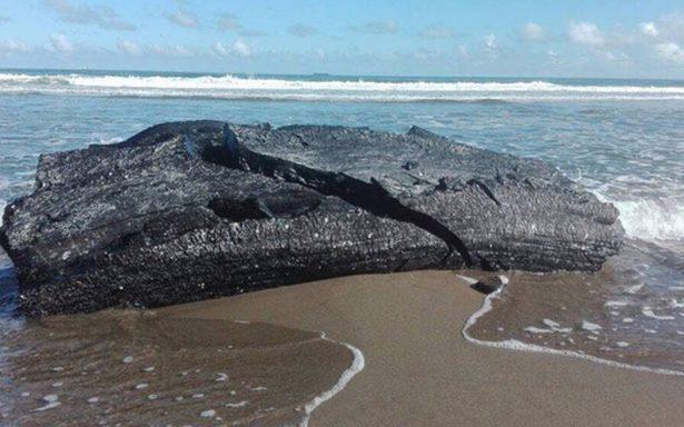 Investigan residuos de hidrocarburo en la costa de Coatzacoalcos