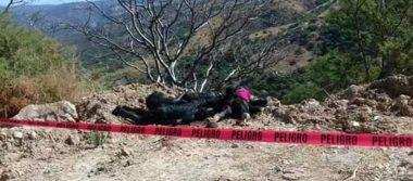 Hallan cinco cuerpos calcinados en región montañosa de Guerrero