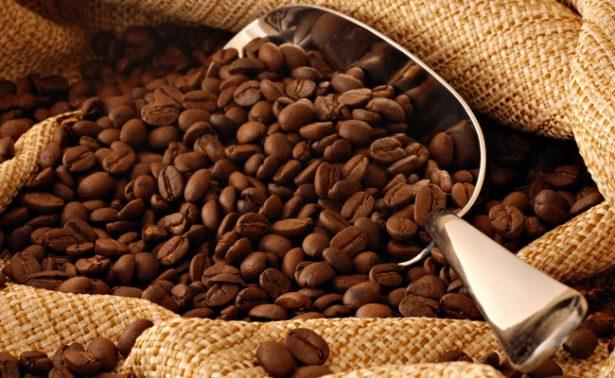 """Secretaría de Agricultura incentiva producción de café """"Hecho en México"""""""