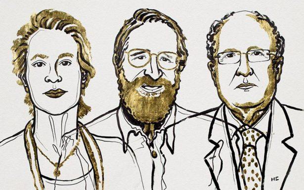 Nobel Química para Arnold, Smith y Winter por avances en el desarrollo de proteínas