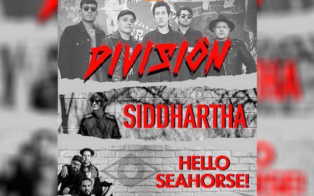 División Minúscula, Hello Seahorse! y Siddhartha darán show en el Naucalli