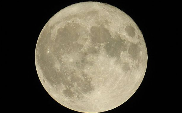 ¿Porque llamamos 'luna del lobo' a la primer luna de enero?