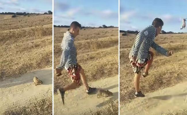 Seguidor de Cristiano Ronaldo patea cruelmente a conejo e indigna en redes
