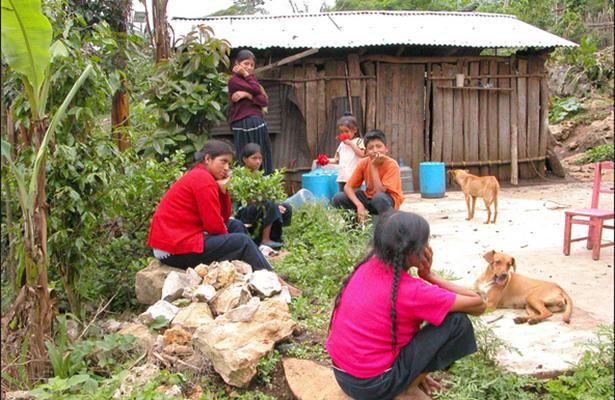 Solicitan al INEGI informe sobre métodos utilizados para medir la pobreza