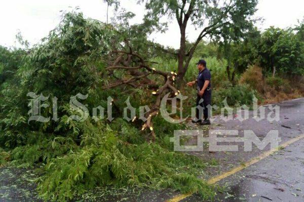 Mínimos daños ocasiona Franklin en la zona de Paso del Macho
