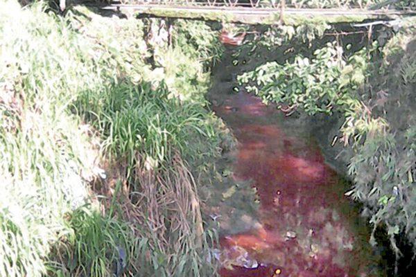 Arroyo  La Sidra  amaneció de color Rojo