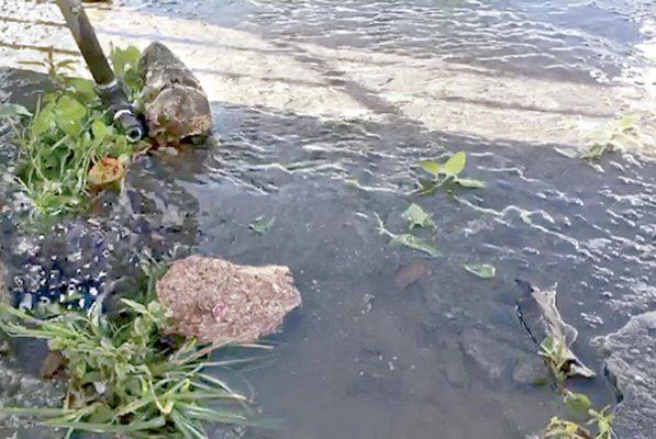Aumentan daños por aguaceros