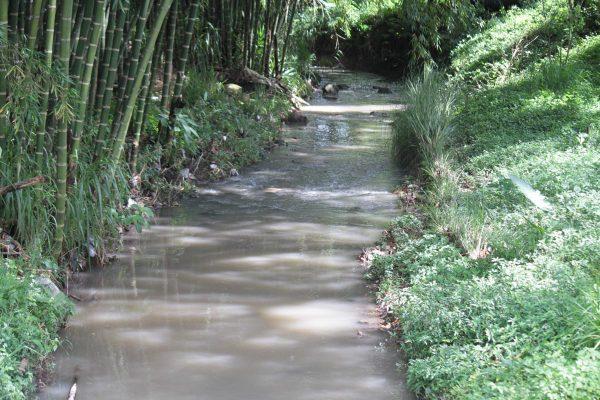 Bloquean tuberías de Dos Arroyos; la ciudad, sin agua