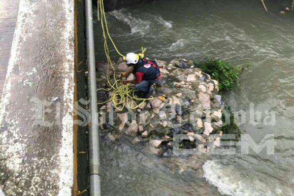 "Rescatan perrito de río ""Tepachero"""