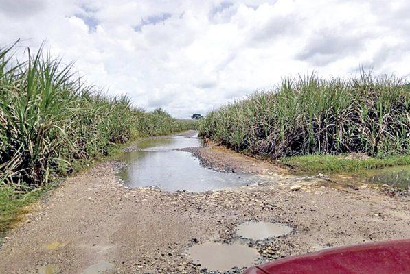 En pésimas condiciones, los  caminos alternos a Tezonapa