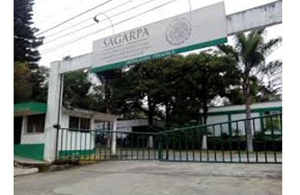 """Funcionario de Sagarpa exigía """"moches""""; fue cesado"""