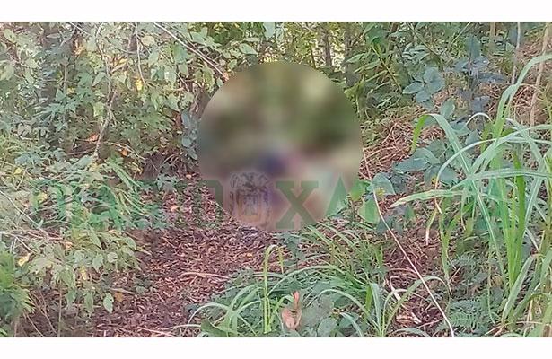 Hallan a dos ejecutados en colonia Framboyanes, en Xalapa