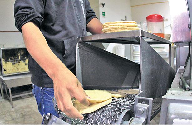Sancionará Profeco aumento arbitrario al precio de la tortilla