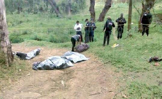 Cinco de los ejecutados en Guerrero serían veracruzanos