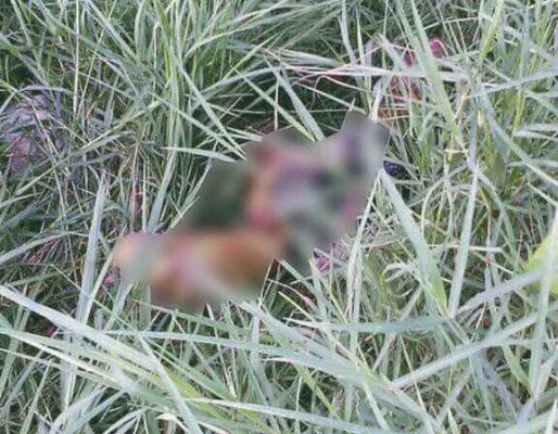 Sin identificar desmembrado encontrado en una zanja de aguas negras