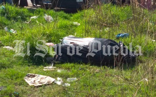 Perros se jalonean bolsa de basura, vecinos descubren cadáver