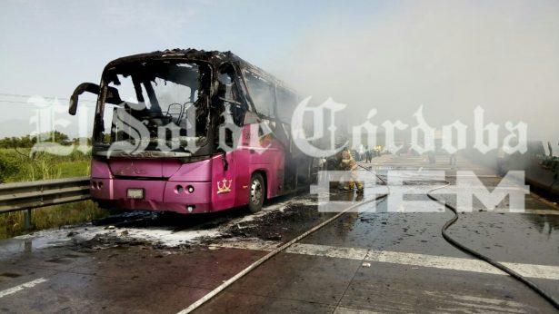 Autobús de turismo es consumido por el fuego