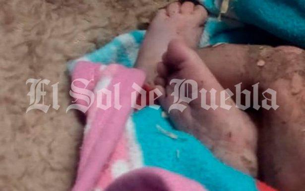Tenía tres horas de haber nacido, la bebé abandonada en terreno baldío