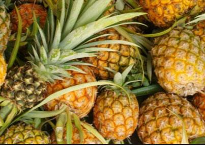 China aprueba importación de piña de Costa Rica