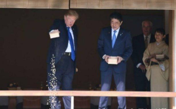 Trump pierde la paciencia y atraganta a carpas koi en Japón